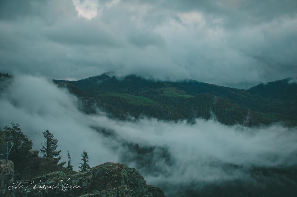 The wayward vixen Colorado mountains fog clouds peeks